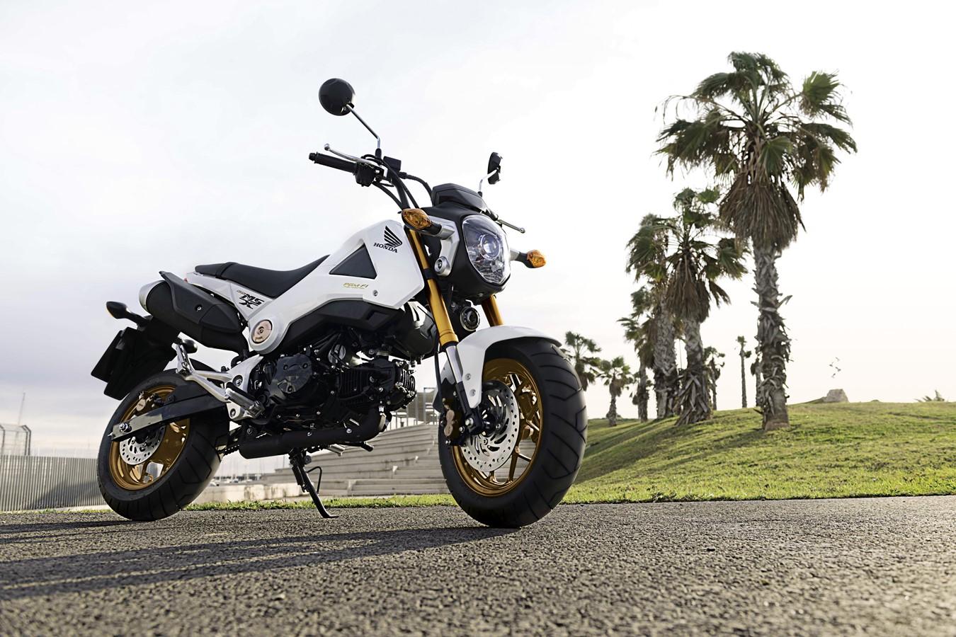 2014 HONDA MSX125