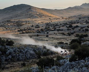 Determination Engineered by Honda