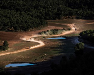 Freedom Created By Honda